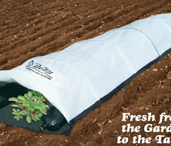 Plant and Frost Protection