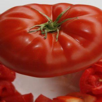 Hybrid Slicer and Juice Tomatoe Seeds